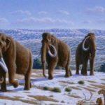 mamouth klimatiki allagh 150x150 - Κοροναϊός: Πανδημία ή απάτη;