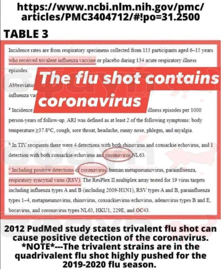 "emvolio koronoiou flu - ΚΟΡΟΝΟΪΟΣ: Στήμένοι θάνατοι από την ""κινέζικη"" πανδημία"