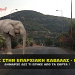 xorta paraliakh kavala mouriadhs 150x150 - Αυτοκτονία στην Εύβοια ΣΟΚ 58χρονου με καραμπίνα σε γήπεδο