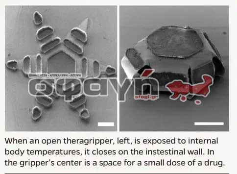 theragrippers 01 - Ενημέρωση για την αλήθεια πίσω από την μεγάλη απάτη του Covid